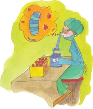 Epidemiologia delle infezioni fungine invasive in Italia meridionale