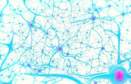 Dislipidemie e demenza