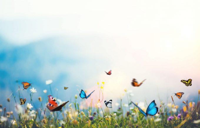 La salute sostenibile: realtà o utopia?